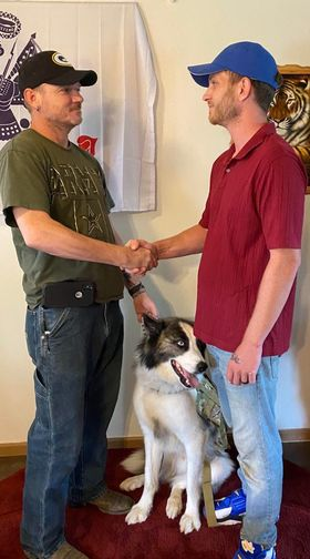 King & Diamond K9 : Dog's helping veterans